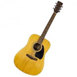 Guitar-Acoustic-Ibanez